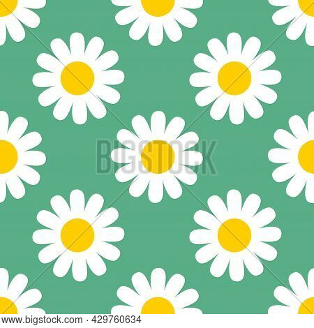 Abstract Cute White Chamomile Flower In Flat Style Seamless Pattern. Floral Daisy Meadow Polka Dot B