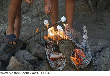 Children On Vacation At Campsite Fry Marshmallows On Twigs On Flame Of Burning Stump. Concept Cookin