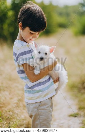 Friendship Of A Child With A Dog. Happy Boy Holding A West Highland White Terrier Puppy In His Arms.