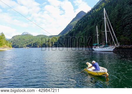 A Man And His Dog Inside A Row Boat Together Rowing In A Beautiful Scenic Seascape View Of A Bay Sur