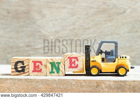 Toy Forklift Hold Letter Block E To Complete Word Gene On Wood Background