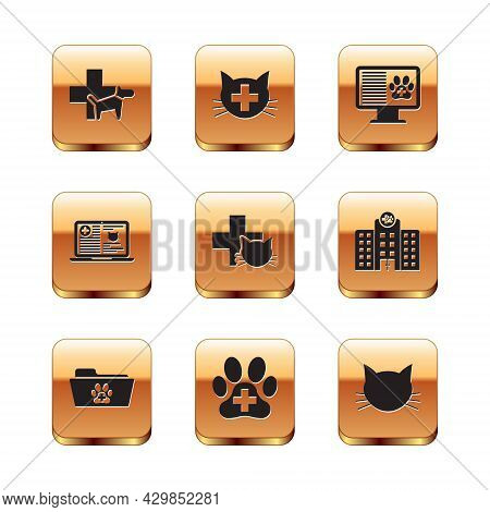 Set Veterinary Clinic, Medical Veterinary Record Folder, , , Clinical Cat On Laptop And Pet Monitor