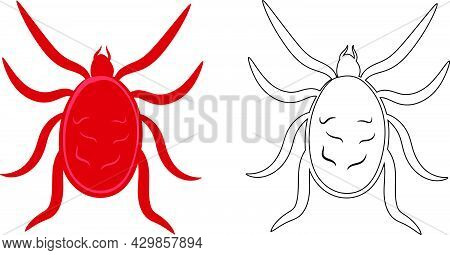 Mite Or Arachnids Illustration Fill And Outline Isolated On White Background. Insects Bugs Worms Pes
