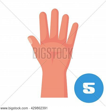 Five Fingers. 1 2 3 4 5 Flat Icon. Hand Gestures And Numbers With Your Fingers. Vector Illustration.
