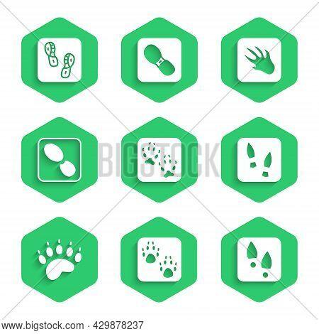 Set Fox Paw Footprint, Paw, Human Footprints Shoes, Bear, Alligator Crocodile And Icon. Vector