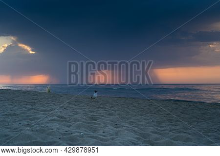 Seascape. Waves On The Coast. Rain Is Pouring Down From The Cloud On The Horizon. Thunderstorm Front