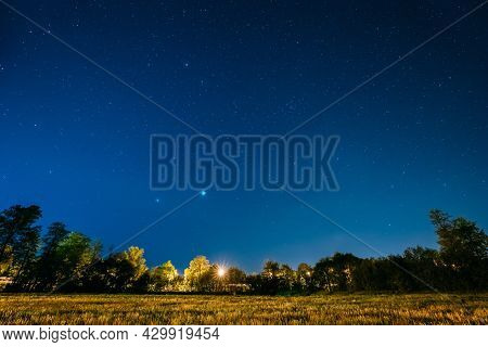 Green Trees Woods In Park Under Night Starry Sky. Night Landscape With Natural Real Glowing Stars Ov