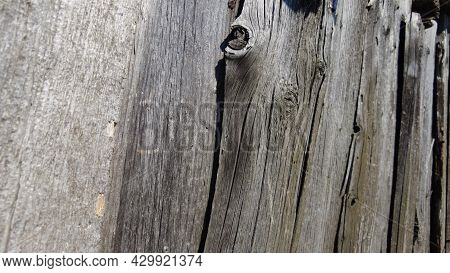 Old Natural Wood Texture Background. Wall Grey, Wooden Boards. Grunge Surface, Timber Backdrop. Rust