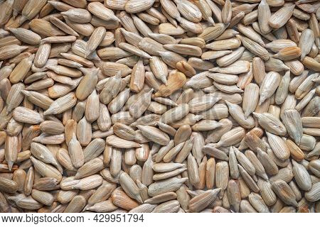 Peeled Sunflower Seeds Background. Close-up Of Roasted Kernel Texture. Food Background.