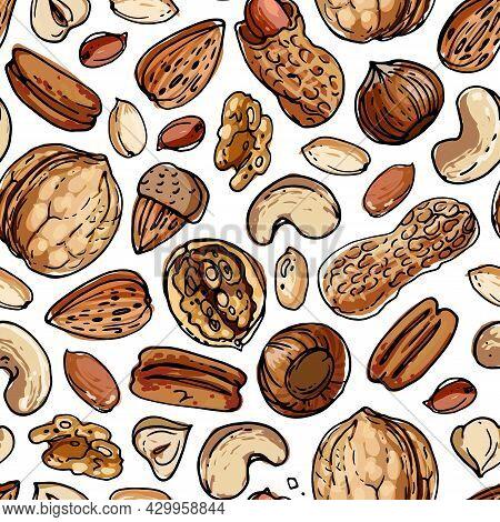 Vector Pattern Nuts. Colored Sketch Of Food. Farm Peanuts, Walnuts, Cashews, Almonds, Hazelnuts