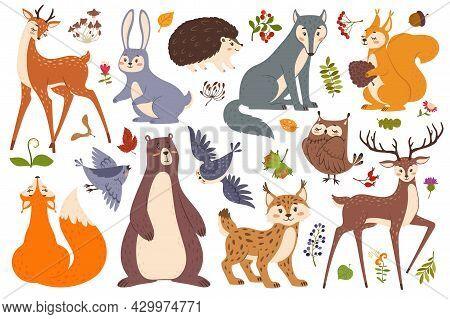 Forest Wildlife Animals And Birds, Cute Woodland Animal. Deer, Fox, Bear, Squirrel, Hedgehog, Wolf,
