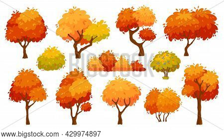 Cartoon Autumn Trees And Bushes, Yellow Forest Tree. Nature Plants With Red Foliage And Leaves. Fall