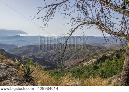 Alpujarra Landscape With Valleys, Ravines, Mountains, A Low Cloud In The Background And Branches Of
