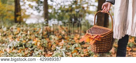 Caucasian Woman In Black Jeans And Beige Scarf Hold In Hand Picnic Basket With Food, Beverages And O