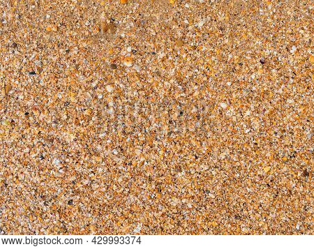 Marine Texture: Close Up Of The Coastline