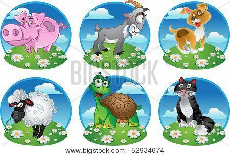 Funny pig goat cat sheep dog tortoise on color background