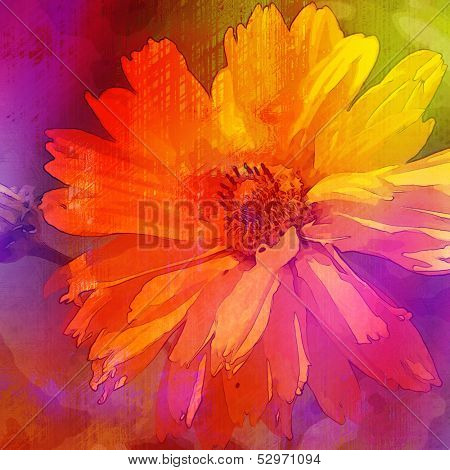 art floral vintage rainbow  background with asters