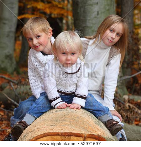 Funny kids playing peek a boo in autumn forest.