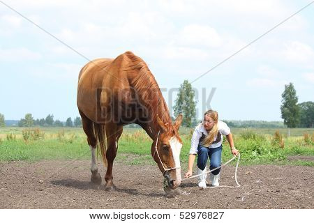 Young Blonde Woman Commanding Chestnut Horse To Lie Down