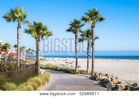 Beach and Palm Trees in San Diego, Southern California Coast, USA