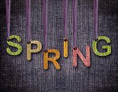 Spring letters hanging strings with blue sackcloth background. poster