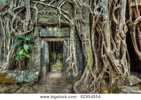 Travel Cambodia concept background - ancient stone door and tree roots, Ta Prohm temple ruins, Angkor, Cambodia