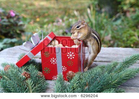 enjoying a holiday feast