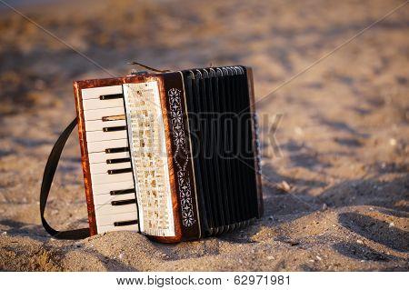 Accordian on a sandy beach