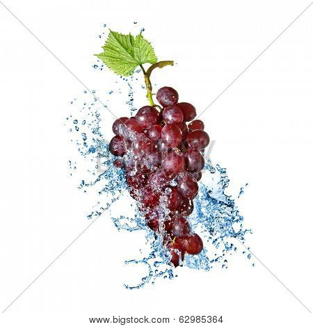 blue grape with water splash isolated on white