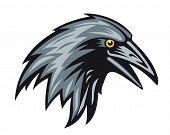 Black raven head for mascot. Vector illustration poster