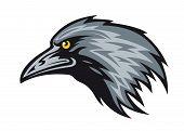 Head of black raven for mascot. Vector illustration poster