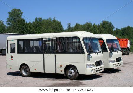 Novos autocarros