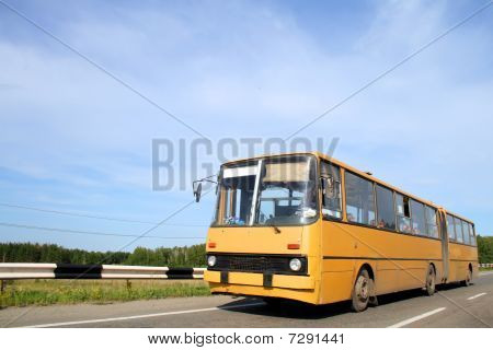 Articulated bus