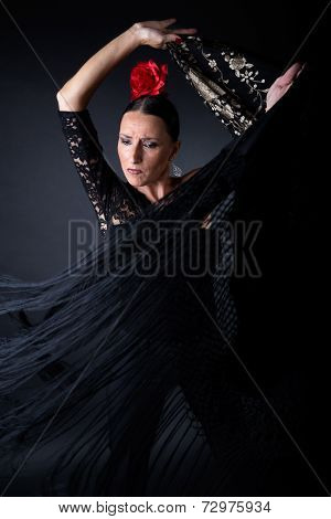 Young Flamenco Dancer In Beautiful Dress On Black Background.