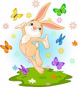 Cute little bunny jumping on the spring meadow poster