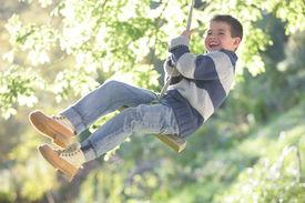 Young boy swinging on tree