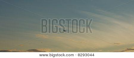 Shadow Bird Against Streaked Clouds