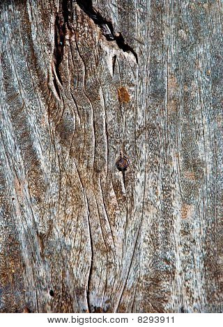 The Old Wooden Texture