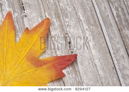 Fall Leaves On Rustic Wood