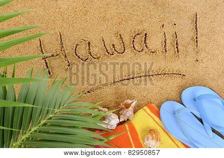 Hawaii Beach Background