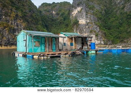 Floating Huts In Halong Bay