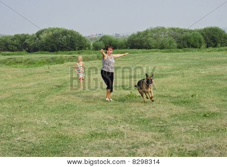 Game With A Dog