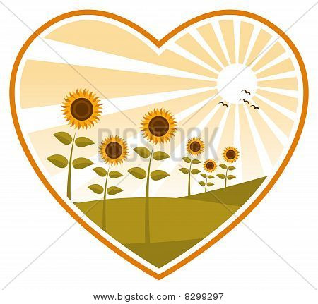Sunflowers In Heart
