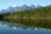 Mountain and forest Reflection in Mirror Lake. Herbert Lake, Rocky Mountains, Canada poster