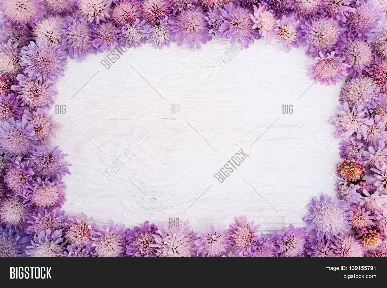 Frame Purple Flowers Image Photo Free Trial Bigstock