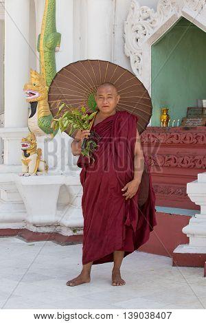 YANGON MYANMAR - FEBRUARY 01 2016: Unidentified Burmese monk in the buddhist costume visit the Shwedagon Pagoda. Shwedagon Pagoda is the most sacred Buddhist pagoda for the Burmese