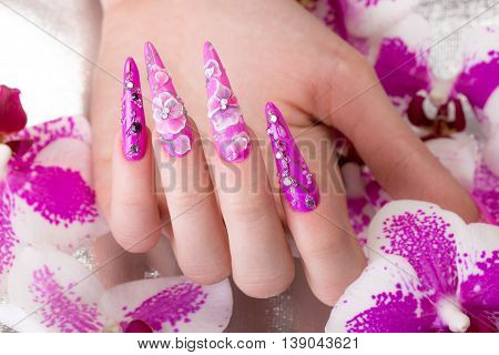 Long beautiful manicure with flowers on female fingers. Nails design. Close-up. Picture taken in the studio on a white background.