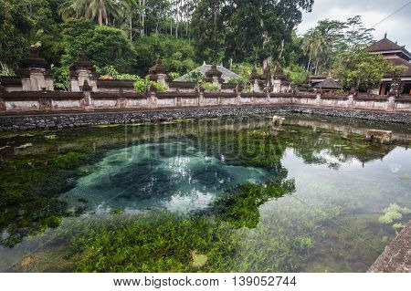 Holiday in Bali, Indonesia - Tirta Empul Holy Water