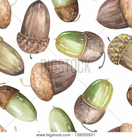 A seamless pattern with a floral ornament of the watercolor forest oak acorns on a white background