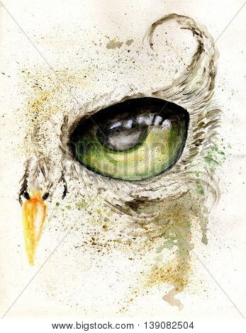 Owl Eye Art